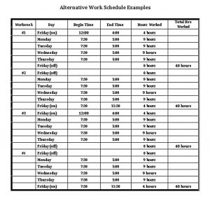 Template Daily Work Schedule Template in PDF