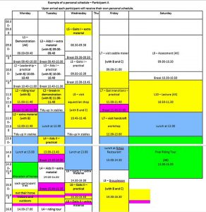 Template Example Personal Schedule