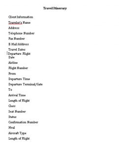 Template Flight Travel Itinerary Schedule Template Free